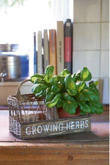Pojemnik Rustic Rattan Kitchen Herb Garden 20x20x30 cm Riviera Maison