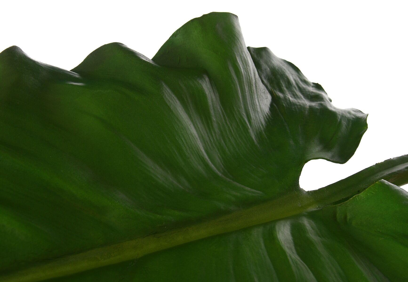 Liść Taro 104cm